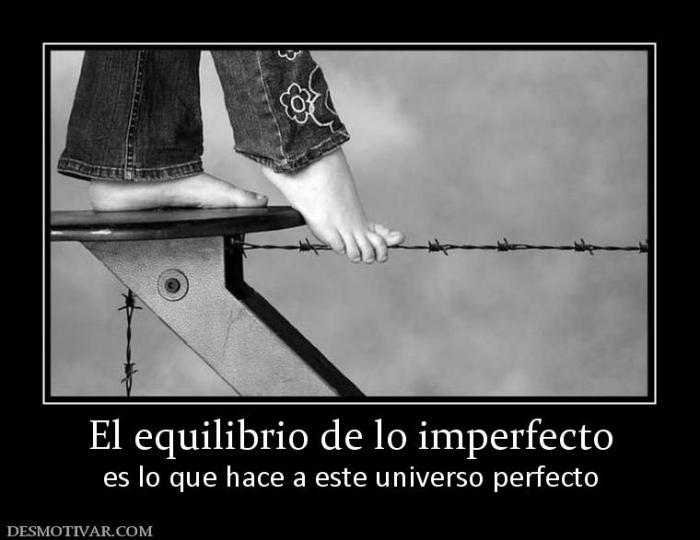 11758_el_equilibrio_de_lo_imperfecto