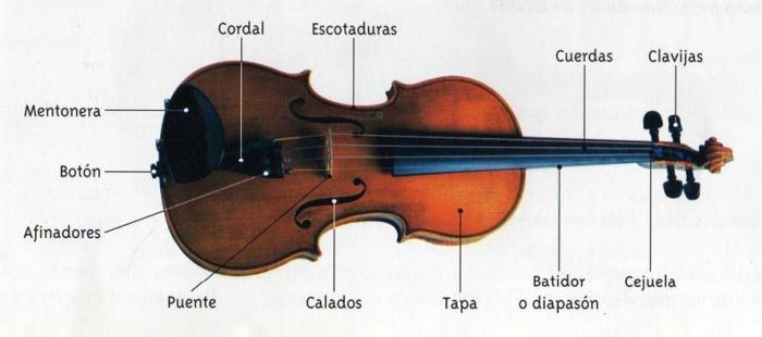 01-violin - Copy - Copy - Copy
