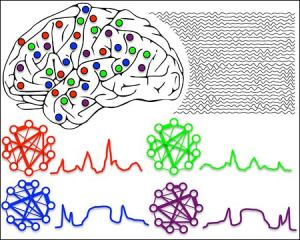 brain450
