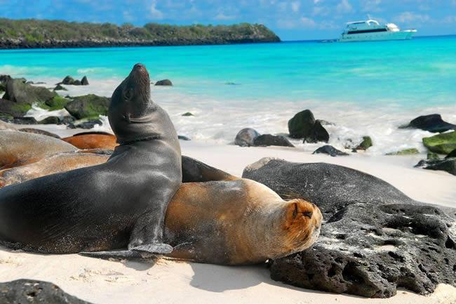 islasgalapagos650