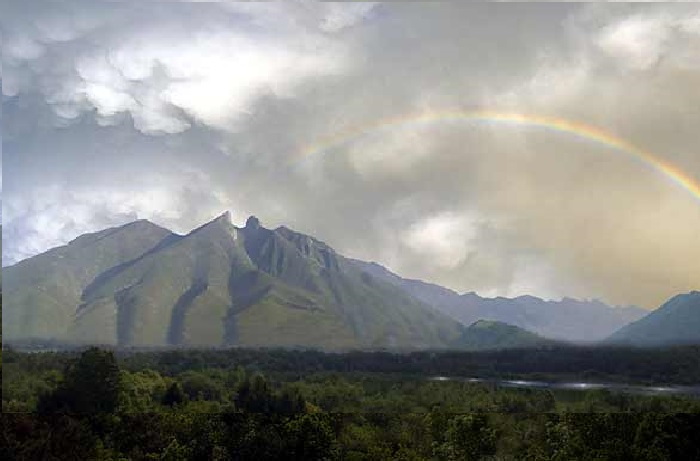 MonterreyPortada